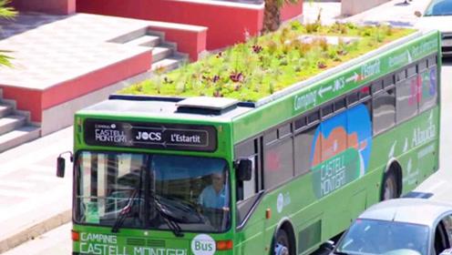 公交车顶种绿植,纯电动浇水,再也不怕人踩踏了