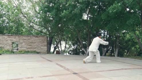 螳螂拳 十八叟 王炳连