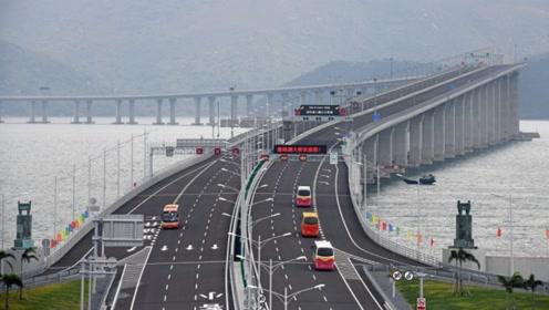 """港珠澳大桥沦落为摆设?车刚上桥就""""打道回府"""",这到底是何原因"""