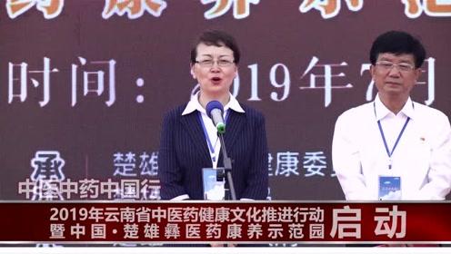 岐黄仁术暖彝州 开创中医药创新发展新局面