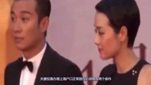 马伊琍已穷力尽心,之所以现在离婚,是为了让文章落户上海?