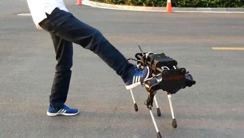 4只黑科技机器狗,中国造不输波士顿动力狗