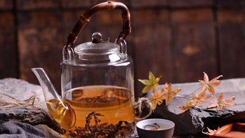 减肥瘦身不想动?三种茶最减脂,不用运动,轻松喝出好身材