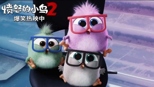 """《愤怒的小鸟2》""""宝宝上班日""""番外片段 笑点满满获赞""""社畜解压必"""