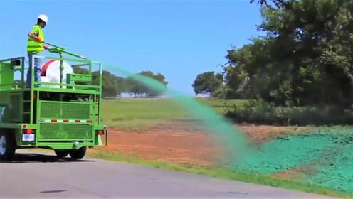 """一喷就能长草的""""液态草坪"""",简直就是绿化神器!"""