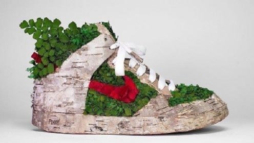 这些有创意的鞋型花盆