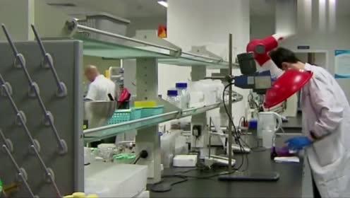 又一顶级科学家回国,放弃优渥条件,只愿为祖国培养优秀人才