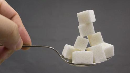 健康科普:带你了解基础营养素之糖类