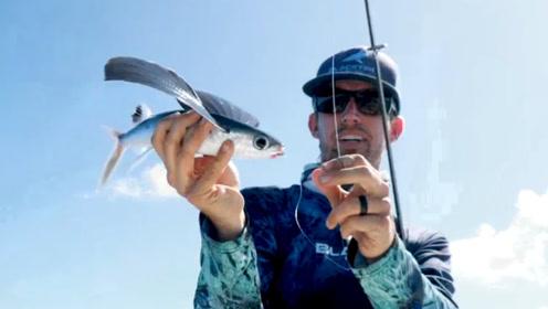 男子钓到一条会飞的鱼,长有彩色翅膀,网友:无奇不有!