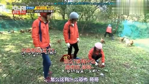 RM宋智孝和她没用的男人们,看到智孝来了,哥哥们让她帮忙抓鸡