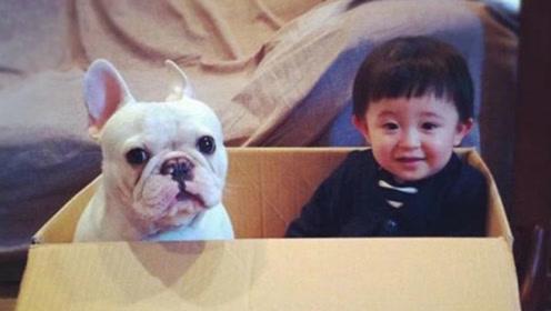 萌娃和狗狗一起等东西吃,眼巴巴看着的样子萌化众人!