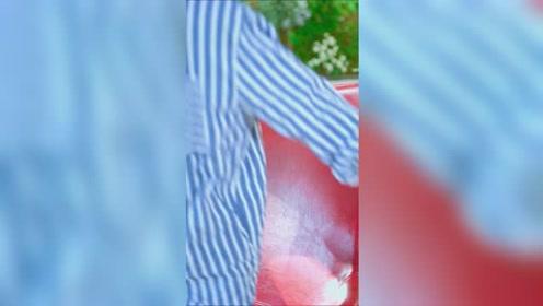 流星花园片段