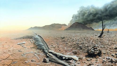 科学家发出警告!若再这样!地球将在2100年发生物种灭绝!