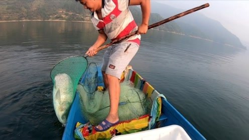 又开始下大网第一天,渔网出水面惊到了,看到一米多长的野生大货