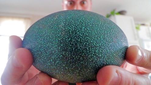 小伙意外得到一枚绿蛋, 孵化50天后,破壳瞬间让人浑身冒冷汗