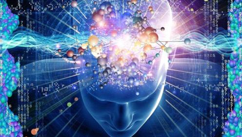 人类和动物都是由粒子组成的,为什么人类有思想,而动物没有?