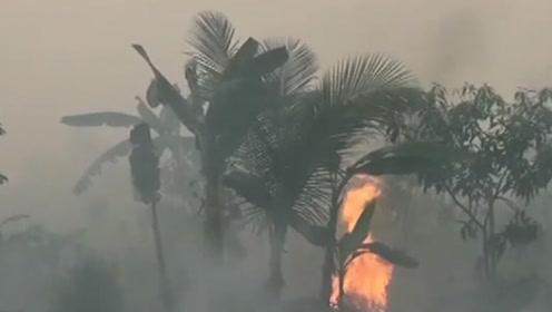 烧芭垦荒引起大范围山火 印尼逮捕185名嫌疑人