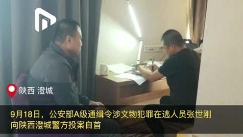 A级通缉令在逃人员投案自首视频曝光!多次盗掘古墓葬倒卖文物