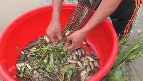 田中的捕鱼神器放置已久,村民拿出来一看,结果发现捕获好多野味