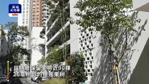 深圳这个公寓戳中年轻人喜好,白色简约风、工业区宿舍改造而成