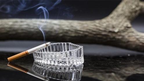 为什么国家不禁止生产香烟,却到处禁止吸烟?今天才知道,涨知识
