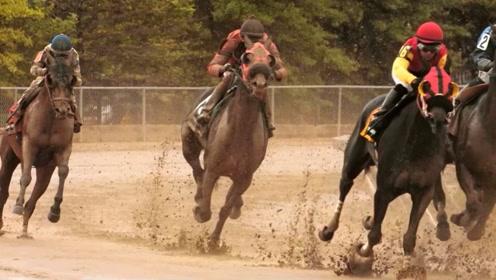 一被骑就装死的马,不拍电影太屈才,演员们情以何堪?
