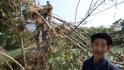 洪水过后留守妇女老人清理河道垃圾,要让家乡的河美起来