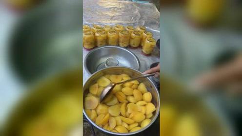 妈妈自已做的黄桃罐头哦