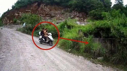 女子带着两个孩子回家突遇面包车,一时慌张悲剧了