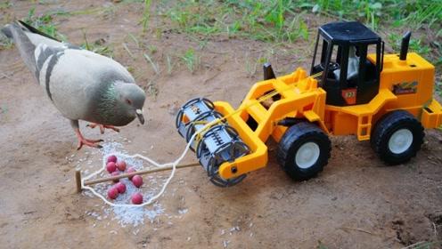不得不佩服小哥的脑洞!居然用玩具车制作陷阱,网友:我服了!