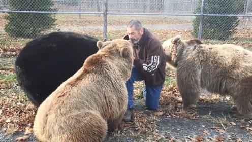 男子多年前救助三只棕熊,再相见已白发苍苍,棕熊的反应令人感动