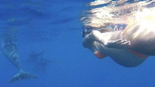"""女子不顾医生劝告,坚持在海中分娩,让海豚当""""接生婆""""!"""