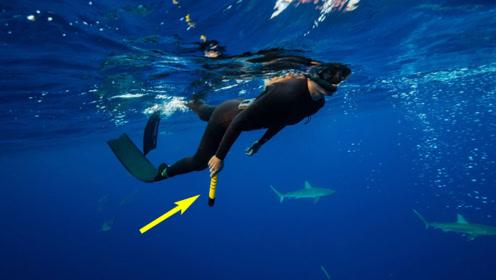世界首个便携式鲨鱼驱赶器,靠电场驱赶,潜水再不怕鲨鱼