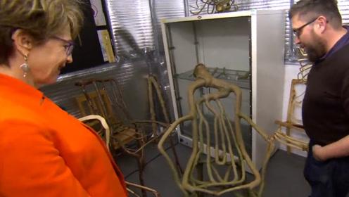 """外国艺术家用树种出""""椅子"""",一把售价25万,坐上去十分舒服!"""