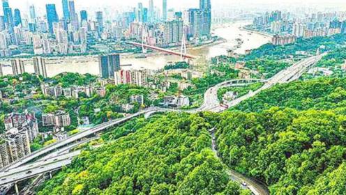 """中国""""最不想""""赚钱的两座城市,风景优美还不宰客,是你家乡吗?"""
