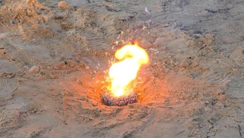将一捆仙女棒塞进蛇洞,点燃后会发生什么?真是大开眼界!