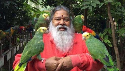 """男子从高空坠落昏迷,醒来发现被百鸟守护,如今成为""""鸟王""""!"""