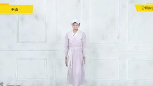中国风舞蹈《不染》舞蹈教学 镜面动作分解