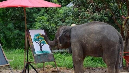 """动物界的""""毕加索"""" 大象居然也会画画 一幅画能卖到6000元"""