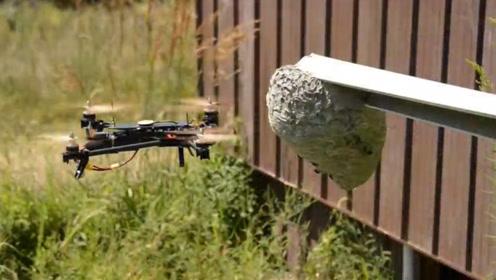 男子用无人机去捅马蜂窝,让人意外的事情发生了,镜头拍下全过程