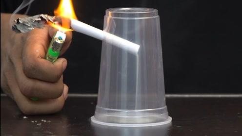 将纸插入杯子中点燃会发生什么?这也太神奇了