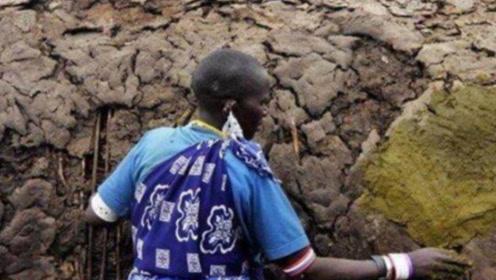 非洲结婚的奇葩习俗,新娘得用牛粪造房给新郎,下雨就尴尬了