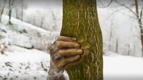 """世界上最""""诡异""""的手,握着一棵树50年,至今从从未松手!"""