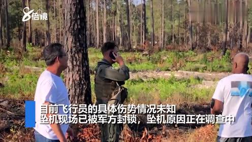 """现场:美军一架""""鹞""""式战机坠机掉进树林,飞行员在一旁打电话"""
