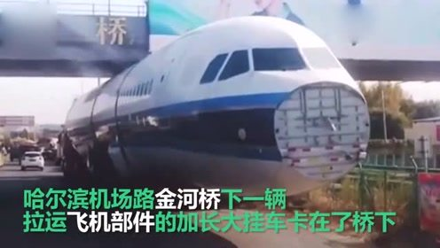 活久见!飞机卡在马路上 一辆拉飞机部件的挂车被卡桥下