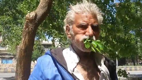 吃树叶上瘾的国家,不做事就嚼叶子,嘴巴变形也不放弃!