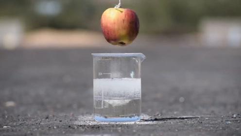食人鱼溶液的威力,到底有多可怕?看看这个苹果的下场就知道了!
