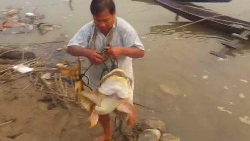 大叔打鱼归来,手里的大鱼让人大开眼界