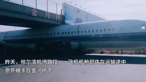 """飞机""""卡""""在高速桥下动弹不得,司机给轮胎放气机智助其""""脱身"""""""