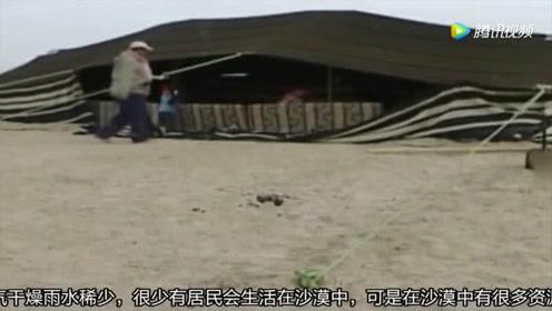 中国这新技术让沙漠都可以种粮食,沙漠变良田,什么科技